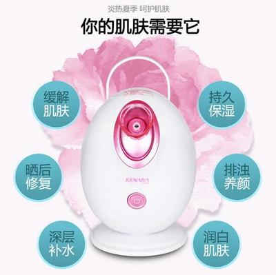 Home Skin Care Deep Cleaning Facial Steamer